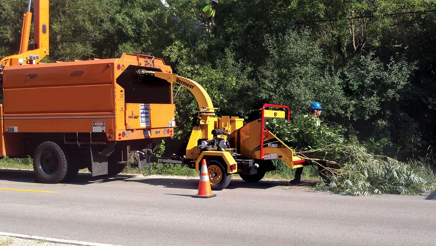 Commercial Tree Services-Tamiami FL Tree Trimming and Stump Grinding Services-We Offer Tree Trimming Services, Tree Removal, Tree Pruning, Tree Cutting, Residential and Commercial Tree Trimming Services, Storm Damage, Emergency Tree Removal, Land Clearing, Tree Companies, Tree Care Service, Stump Grinding, and we're the Best Tree Trimming Company Near You Guaranteed!