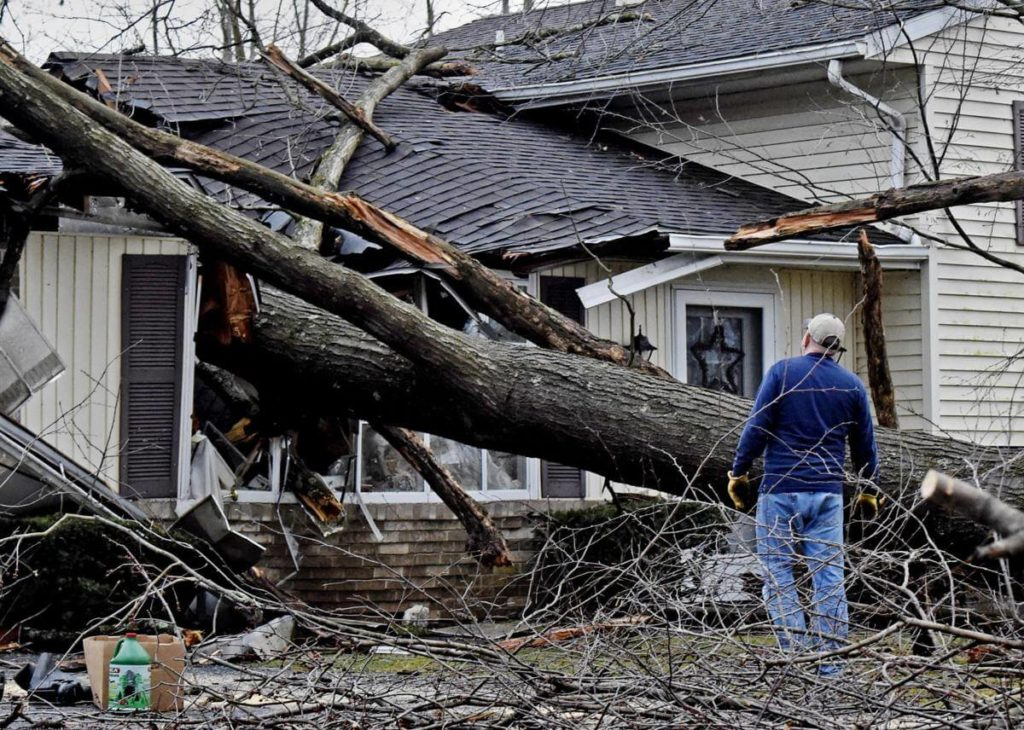Storm Damage-Tamiami FL Tree Trimming and Stump Grinding Services-We Offer Tree Trimming Services, Tree Removal, Tree Pruning, Tree Cutting, Residential and Commercial Tree Trimming Services, Storm Damage, Emergency Tree Removal, Land Clearing, Tree Companies, Tree Care Service, Stump Grinding, and we're the Best Tree Trimming Company Near You Guaranteed!