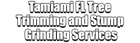 Tamiami FL Tree Trimming and Stump Grinding Services Logo-We Offer Tree Trimming Services, Tree Removal, Tree Pruning, Tree Cutting, Residential and Commercial Tree Trimming Services, Storm Damage, Emergency Tree Removal, Land Clearing, Tree Companies, Tree Care Service, Stump Grinding, and we're the Best Tree Trimming Company Near You Guaranteed!